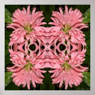 Flor reflexión enero de 2013 rosado poster