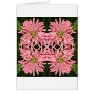 Flor reflexión enero de 2013 rosado tarjetón