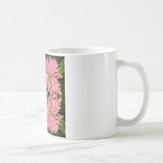 Flor reflexión enero de 2013 rosado taza