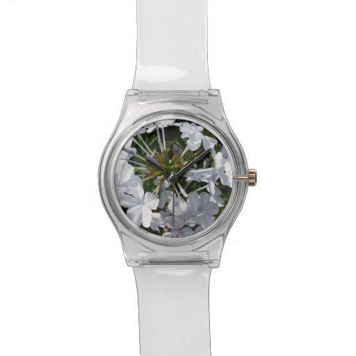 Flor Reloj
