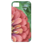 Flor revelado iPhone 5 carcasas