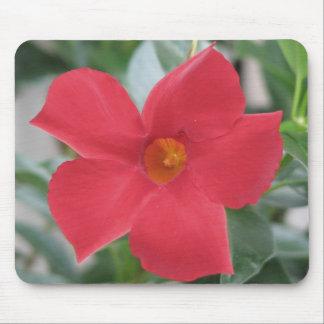 Flor roja alfombrilla de ratones