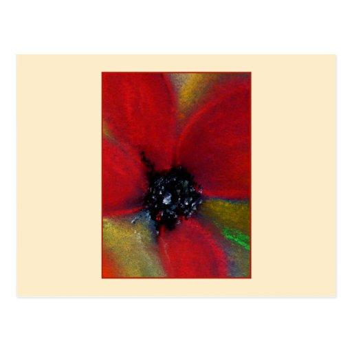 Flor roja, amapola tarjeta postal