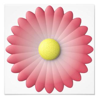 flor roja arte fotográfico