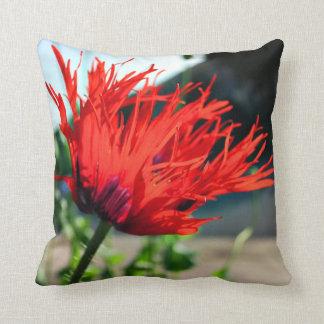 Flor roja brillante de la amapola cojín decorativo