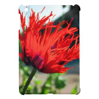 Flor roja brillante de la amapola iPad mini protectores