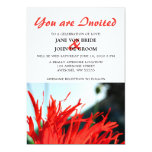 Flor roja brillante de la amapola invitación 12,7 x 17,8 cm