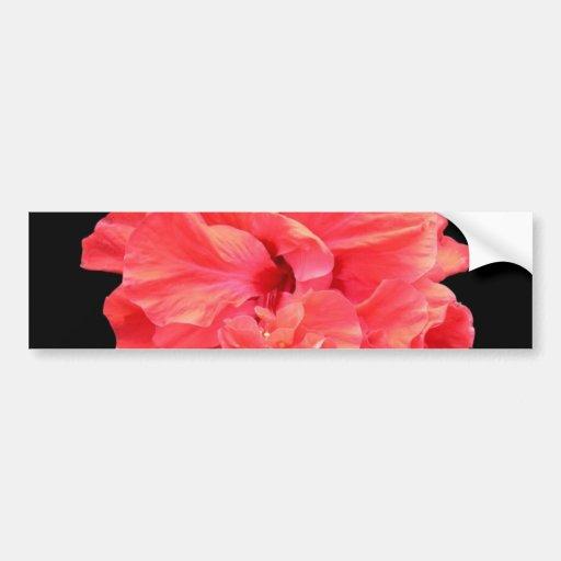 Flor roja brillante del hibisco pegatina de parachoque
