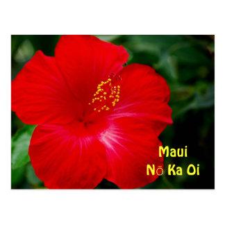 Flor roja brillante del hibisco Maui Hawaii Tarjetas Postales