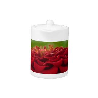 Flor roja brillante (regalo)