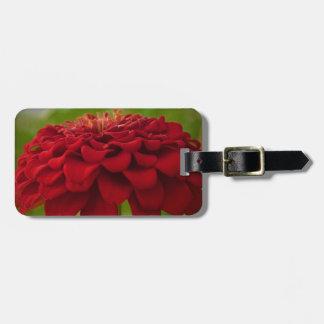 Flor roja brillante (regalo) etiquetas de maletas