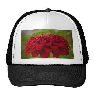 Flor roja brillante (regalo) gorras de camionero