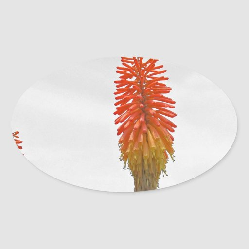 Flor roja colcomanias oval personalizadas