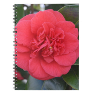 Flor roja de Camelia Libretas Espirales
