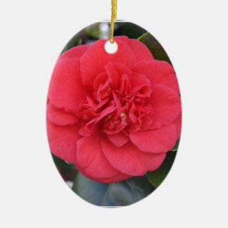 Flor roja de Camelia