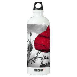 Flor roja de la amapola en el cielo blanco y negro