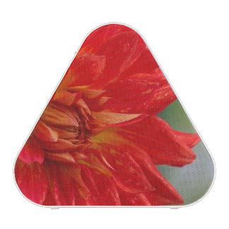 Flor roja de la dalia del otoño en el jardín altavoz bluetooth