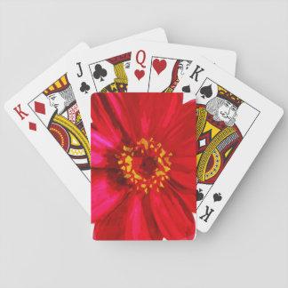 Flor roja de la margarita con el extracto amarillo baraja de cartas
