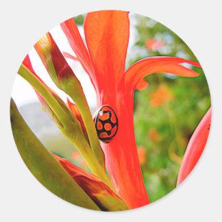 flor roja de la mariquita del legado móvil