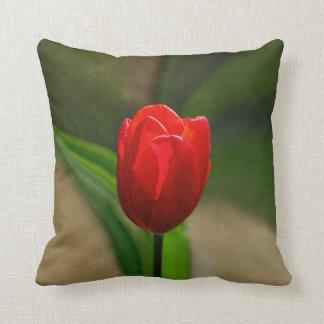 Flor roja de la primavera del tulipán cojín