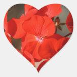 Flor roja del geranio pegatina corazon personalizadas