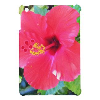 Flor roja del hibisco de Hawaii