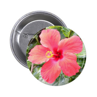 Flor roja del hibisco en Honolulu tropical, Hawaii Pin