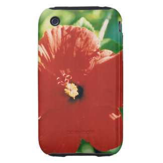 Flor roja del hibisco tough iPhone 3 protector