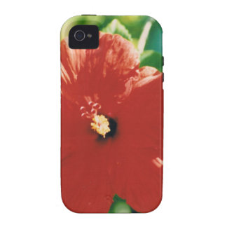Flor roja del hibisco iPhone 4 funda