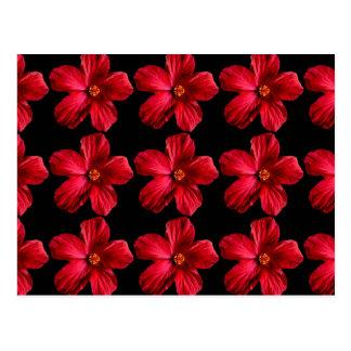 Flor roja del hibisco postales