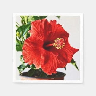 Flor roja del hibisco servilleta desechable