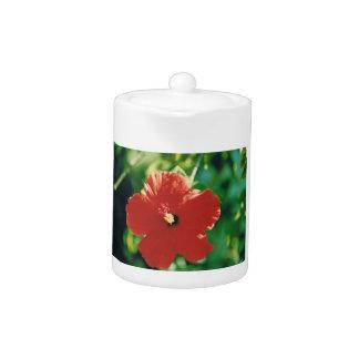 Flor roja del hibisco