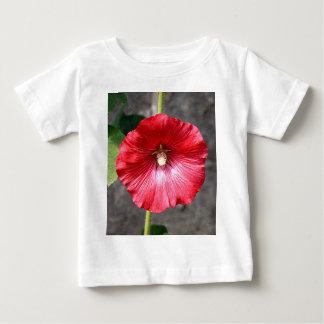 Flor roja del hollyhock en la floración playera de bebé