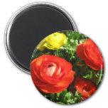 Flor roja del ranúnculo imán redondo 5 cm