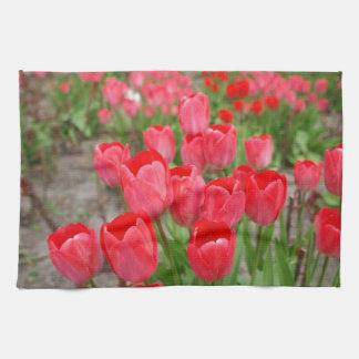 flor roja del tulipán toallas
