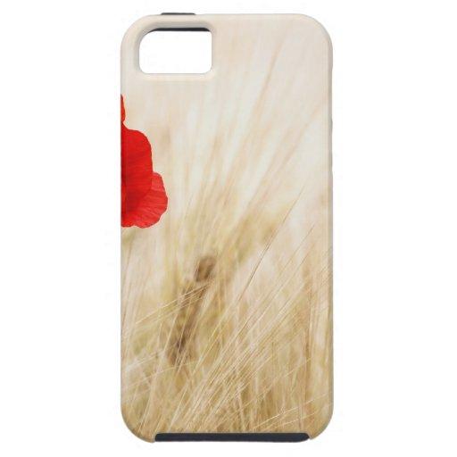 Flor roja en campo iPhone 5 carcasas