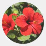 Flor roja etiqueta redonda