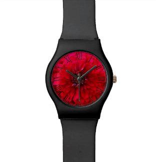 Flor roja hermosa del Zinnia del jardín Reloj