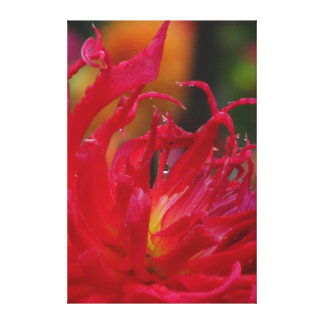 Flor roja hermosa impresión en lienzo