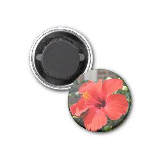 Flor roja imán redondo 3 cm