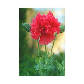 Flor roja impresión en lona