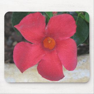 Flor roja mouse pads