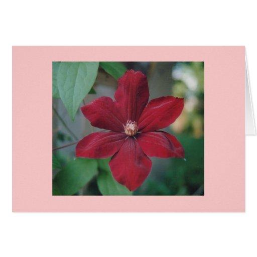 Flor roja Notecards Tarjeta Pequeña