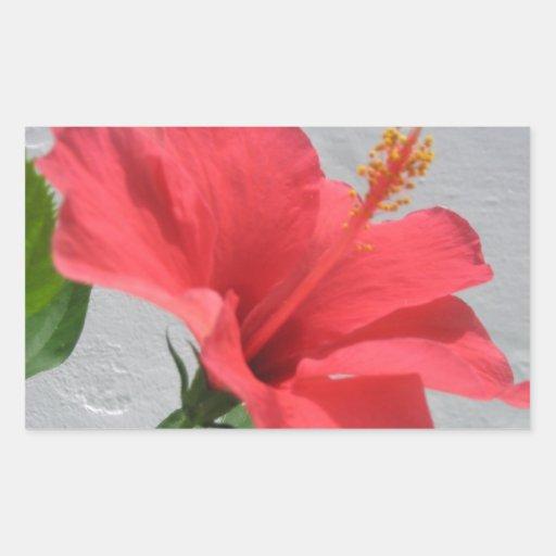 Flor roja pegatina rectangular