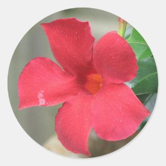 Flor roja pegatina redonda