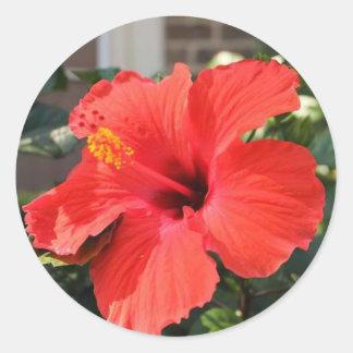 Flor roja pegatinas redondas