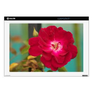 Flor roja portátil 43,2cm skin