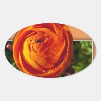 Flor roja que sale del marco con una indirecta del pegatina ovalada