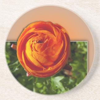 Flor roja que sale del marco con una indirecta del posavasos diseño