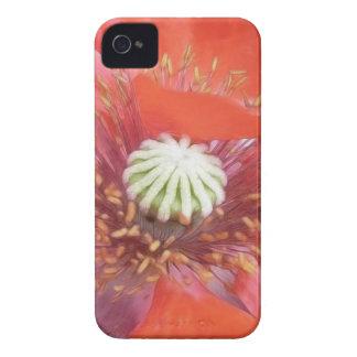 Flor roja romántica de la amapola Case-Mate iPhone 4 fundas